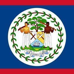 中米ベリーズの国旗